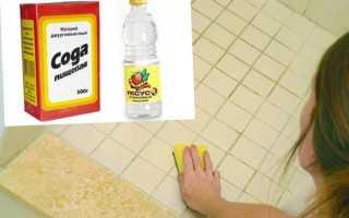 Как убрать плесень в ванной комнате (черные пятна на потолке, между плитками на стене) самостоятельно: народные рецепты, домашние и