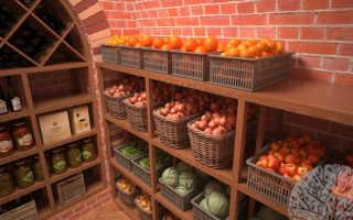Можно ли хранить яблоки в погребе вместе с картошкой, как организовать хранение фруктов в одном подвале с картофелем?