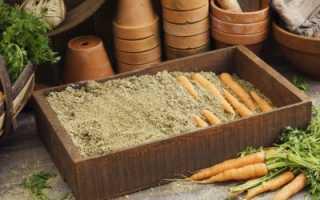 Хранение моркови в песке на зиму: можно ли и как правильно хранить, каким должен быть песочек – сухим или