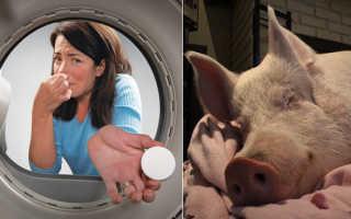 Белье после стирки неприятно пахнет: почему постиранные в стиральной машине-автомат вещи воняют тухлым и кислым, что делать с запахом
