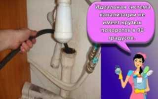Как убрать запах плесени в квартире, из холодильника, термоса, в ванной комнате, с одежды, обуви и других мест?